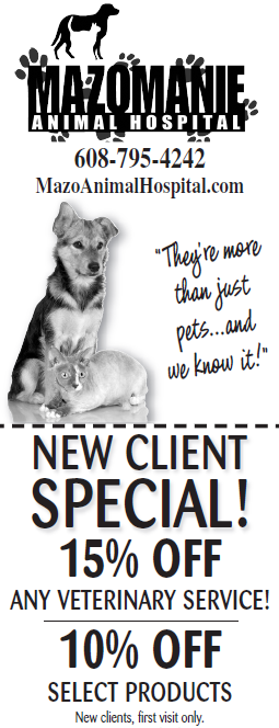 15% off new client