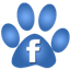 Pet Care tips on Facebook. LIke us; join our family.