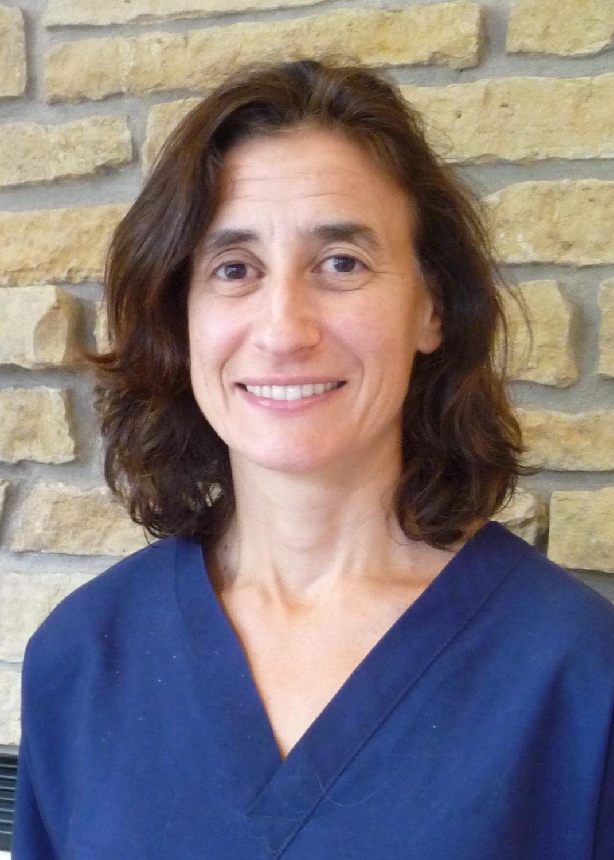Dr Didi Heisler
